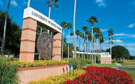 University of South Florida-2
