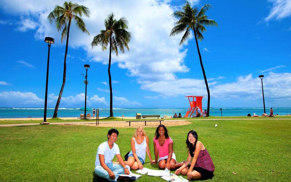 Global Village Hawaii-5拷貝