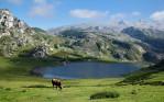 Lleida Pyrenees- LSI