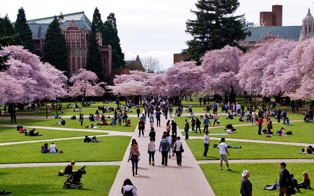 University of Washington拷貝