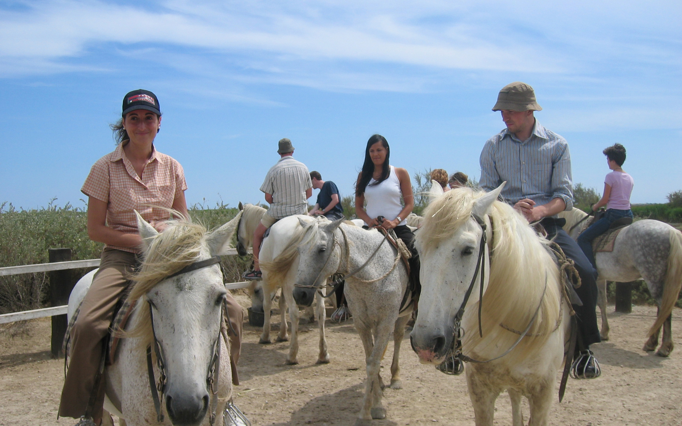 horse-back-riding-camargue-quality拷貝